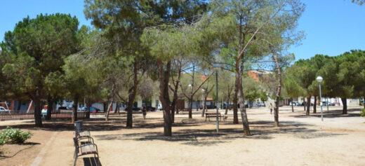 Arbres Plaça Treball