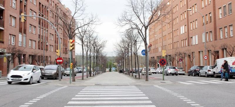Avinguda de l'alcalde Moix. Foto: N.Bueno.