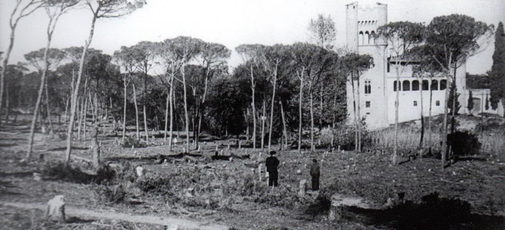 Foto portada: tales d'arbres al 1937. Autor: F. Casañas/AFUES