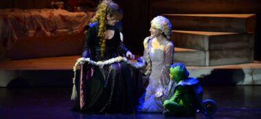 La fetillera i Rapunzel. Autor: David B.