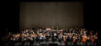 Un moment del concert de l'OSV. Autor: David B.