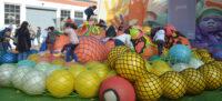 Una de les activitats del Festival. Autor: David B.