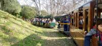 Foto portada: vagons circulant pel Trenet del Parc de Catalunya, fa uns dies. Autor: J.d.A.