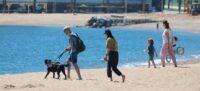 Banyistes a les platges de Barcelona el 20 de maig del 2020. (Horitzontal)